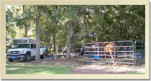 Camping at Camelot Farms Equestrian Center